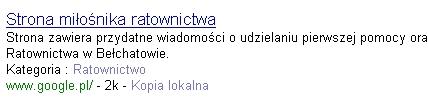 Strona zawiera przydatne wiadomości o udzielaniu pierwszej pomocy oraz parę słów o autorze i Rejonowym Sztabie Ratownictwa w Bełchatowie